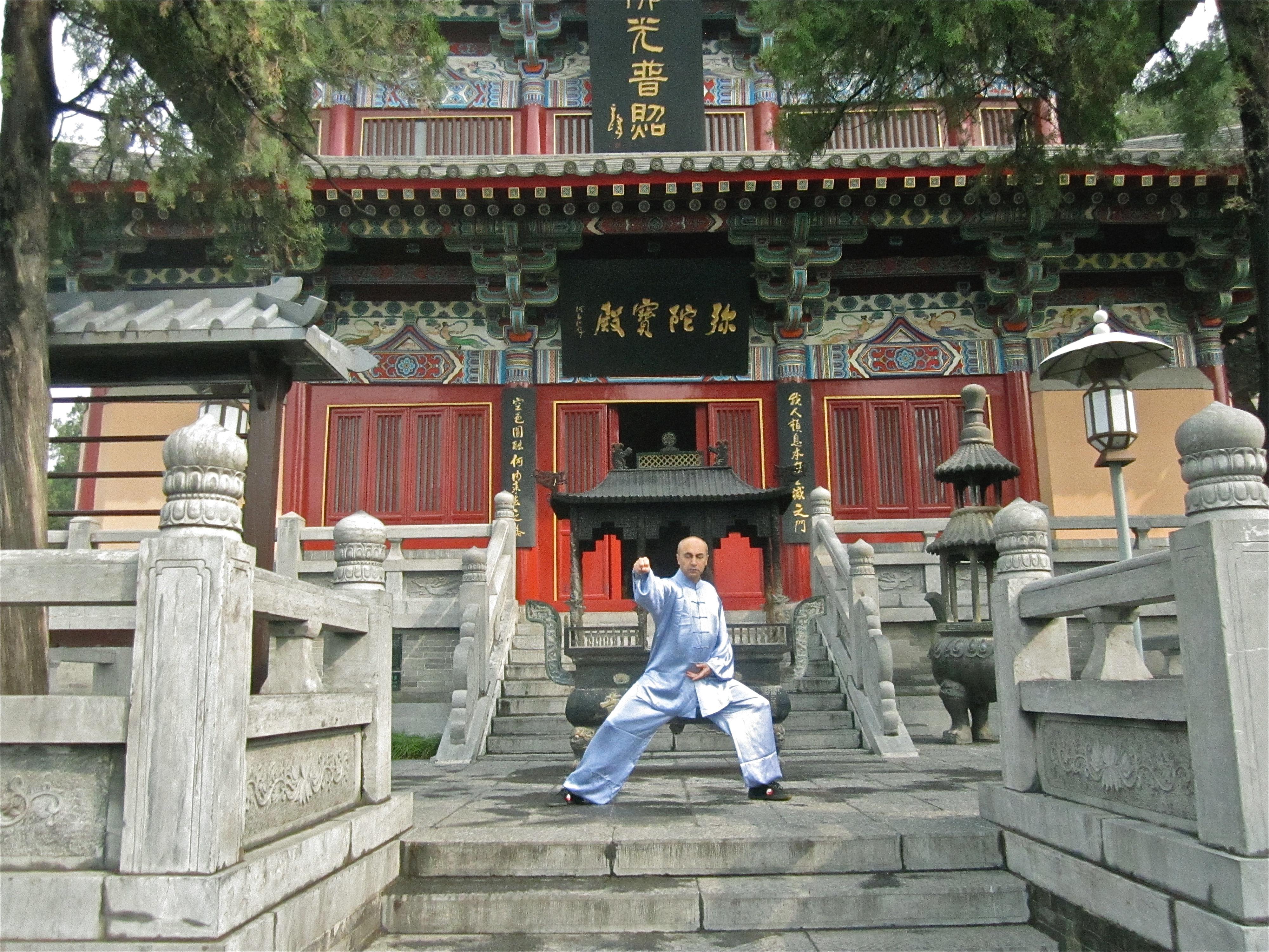 Tai Chi Chuan Meister Sarafnia